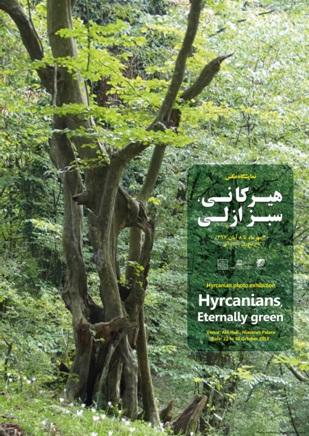 نمایشگاه عکس «ثبت جهانی جنگل های هیرکانی» در کاخ نیاوران افتتاح می شود/ تالار آبی در انتظار «سبز ازلی»