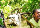 """فراخوان برگزاری پنجمین دوره """"جایزه یونسکو- ژاپن در زمینه آموزش برای توسعه پایدار"""""""