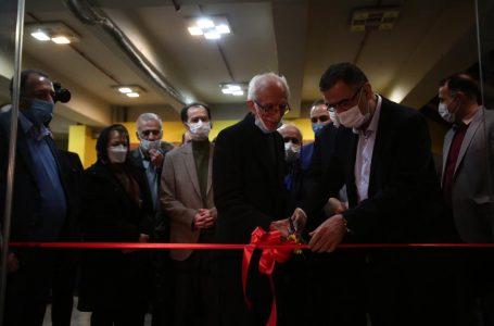نمایشگاه بین المللی رقص قلم در فرهنگستان هنر افتتاح شد