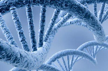 برگزاری سومین دوره از میزگرد اخلاق در ژنوم